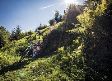 Biken im Grünen by Sebastian Dörk